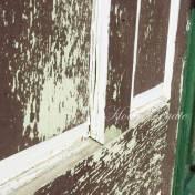 close-up-schooney-door
