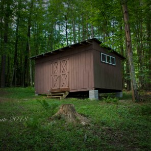 forest-single-cabin