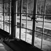 inside-of-schooney-windows