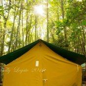 maples-tent
