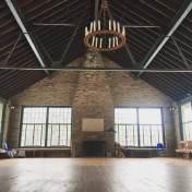 schooney-inside-chandelier